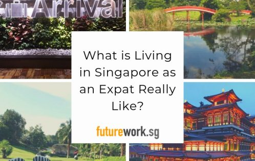What is Living in Singapore as an Expat Really Like